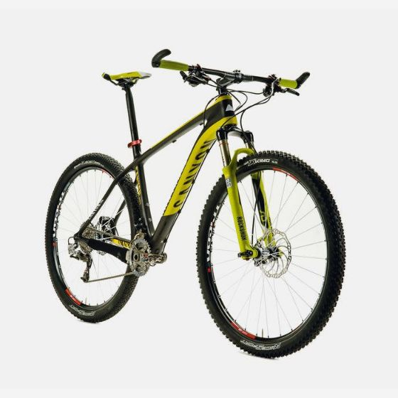 Picture of Custom Mountain bike
